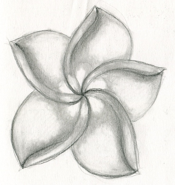 Alohaflower